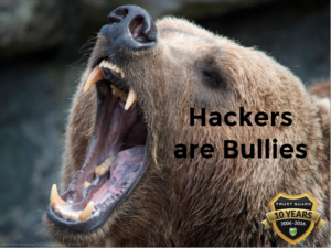 Hackers Are Bullies