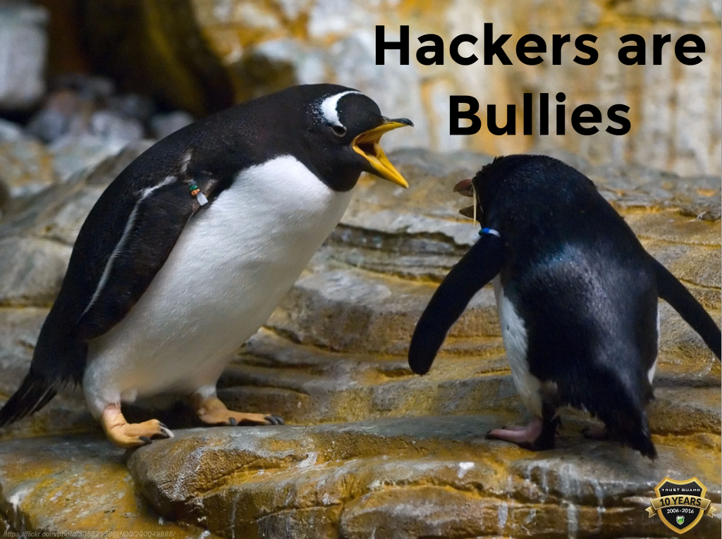 Hackers Are Bullies!
